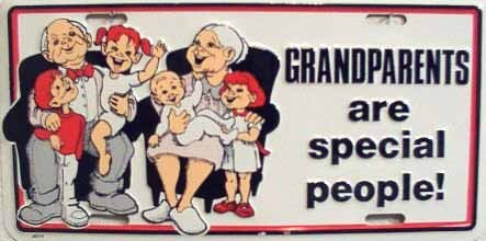 LP-275 Grandparents are Special People License Plate - 316